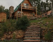 8107 S Brook Forest Road, Evergreen image
