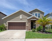 12309 Ballentrae Forest Drive, Riverview image