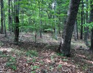 LT2&3 Mt Pleasant Ridge, Blairsville image