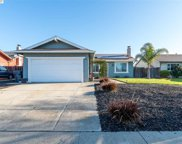906 Pintail Drive, Suisun City image