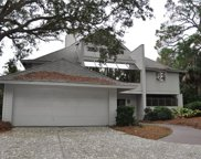 21 Black Skimmer Road, Hilton Head Island image