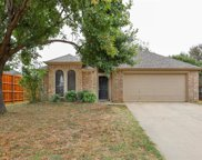 764 Texas Oak Trail, Lake Dallas image