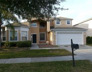 13863 Fox Glove Street, Winter Garden image