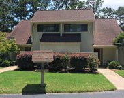 140 Tall Pines Way Unit 6-17, Pawleys Island image