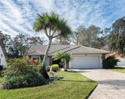 249 Saint James Way, Naples image