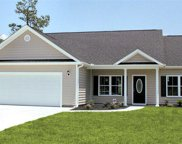 TBB5 Barons Bluff Drive, Conway image