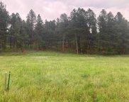 TBD Sidney Trail, Custer image
