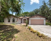 10406 Indian Mound Drive, New Port Richey image