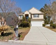 408 Blackberry Ln, Myrtle Beach image