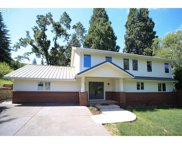 27460 BRIGGS HILL  RD, Eugene image