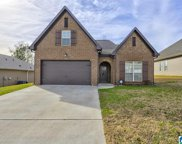 2043 Kerry Cir, Calera image
