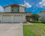 16129 Gardendale Drive, Tampa image