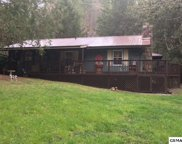 3041 N Clear Fork Rd, Sevierville image