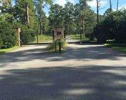 Pine Bluff Unit -, Tallahassee image