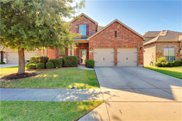 213 Willet Court, Little Elm image