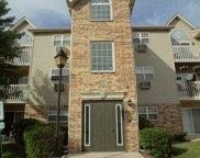 1584 W Crystal Rock Court Unit #2C, Round Lake Beach image