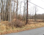 Panther Hill Road Tr 56a, Mountain Dale image