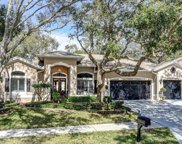 1722 La Forest Avenue, Safety Harbor image