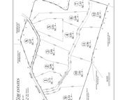3 Weeping Willow Rd Tract 3, Hendersonville image