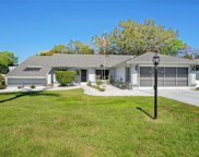 11043 Thornberry Drive, Spring Hill image