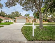 2907 Meadow Wood Drive, Clearwater image