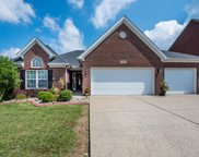 11405 Willow Branch Dr, Louisville image
