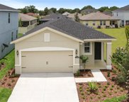 17424 Painted Leaf Way, Clermont image