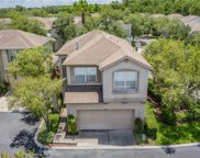 10501 Cranleigh Ct, Tampa image