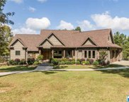 571 Chelsea Springs Dr, Columbiana image