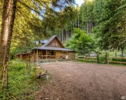 16414 Mountainside Dr E, Greenwater image