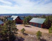 11431 Wrangler Road, Custer image