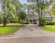4425 Downing Place Way, Mount Pleasant image