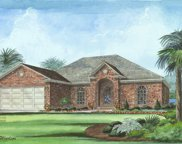 986 Yellow Jasmine Drive, Longs image