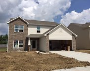 12388 Rustic Meadow  Drive, Indianapolis image