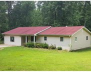 15873 County Road 511a, Dexter image