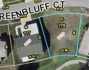 4130 Greenbluff Court Unit 776, Zellwood image