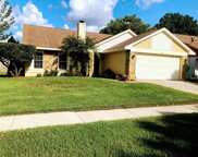 7111 Hollowell Drive, Tampa image
