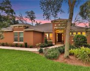 2554 Tree Meadow Loop, Apopka image