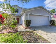5839 Wrenwater Drive, Lithia image