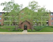 661 Hapsfield Lane Unit 302, Buffalo Grove image