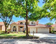 17831 Green Willow Drive, Tampa image