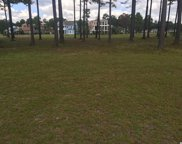 1199 Fiddlehead Way, Myrtle Beach image