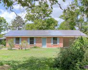 13327 Posey Bourgeois Rd, Gonzales image