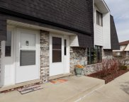 16233 Apple Lane Unit 4, Tinley Park image