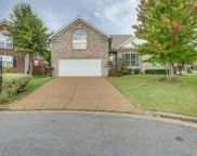 2236 Golden Oak Pl, Madison image