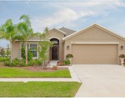 2302 Dovesong Trace Drive, Ruskin image