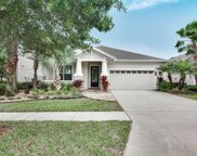8114 Savannah Point Court, Tampa image