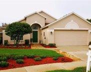 24241 Branchwood Court, Lutz image