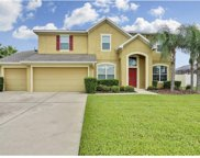11810 Newberry Grove Loop, Riverview image