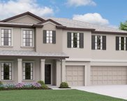 1611 Harvest Amber Place Drive, Ruskin image
